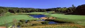 Read more about the article Troy Burne – A Fall Golf Treat