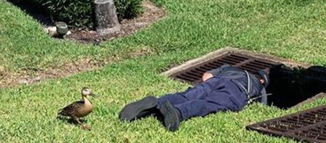 Ducklings Down drain 2 GolfTales RJSmiley